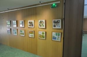 web10 300x199 Dijon : une expo écologie et BD